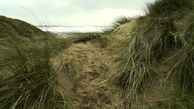 Sand Dunes On A Stormy Beach video