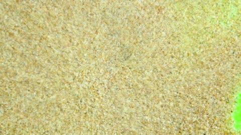 vídeos de stock e filmes b-roll de sand on a green screen - areia