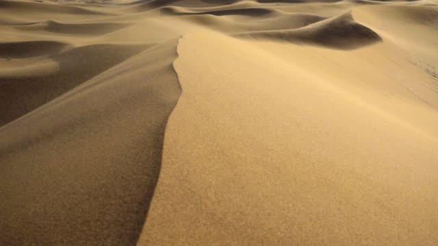Sand storm on sand dunes video