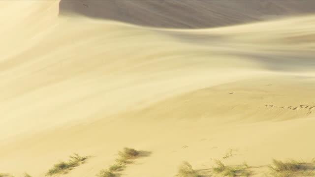 sands storm video