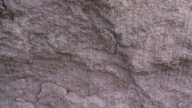 Sandstone is a sedimentary rock composed of sand-size grains of mineral, rock, or organic material.