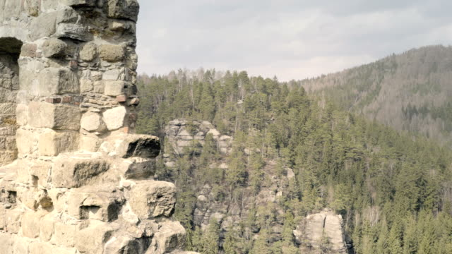 Sandstone rocks with castle, rock massifs in forest. Climbing landscape in Germany, big stones. video