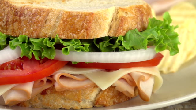 Sandwich Close-Up video