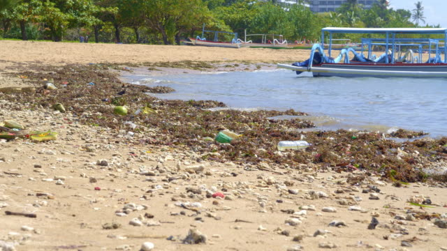 vídeos de stock e filmes b-roll de sandy beach with a lot of organic and plastic waste - bali