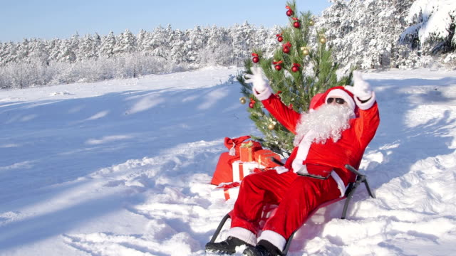 Santa Claus near Christmas tree enjoying frosty sunny day in snow video