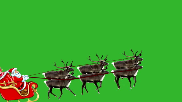 Santa Claus pulled by rendeer flying video