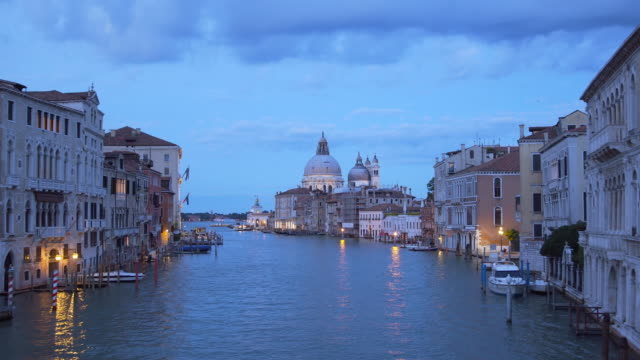 Santa Maria della Salute in Venice, Italy at night video