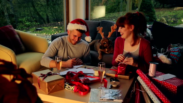 Santa's Little Helper video