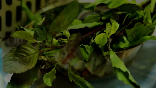 Santed pork with chilli and Basil leaves video