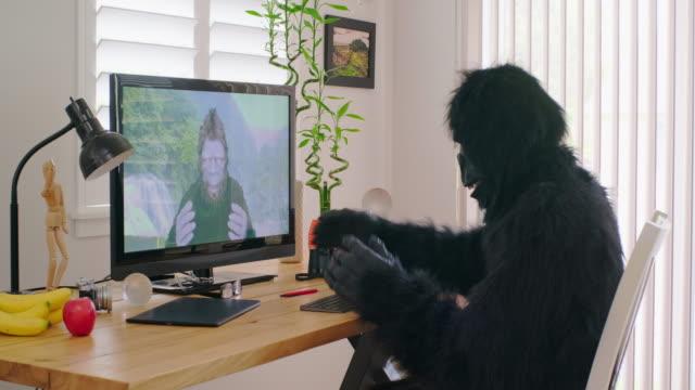 sasquatch and gorilla online videoconference - yeti video stock e b–roll