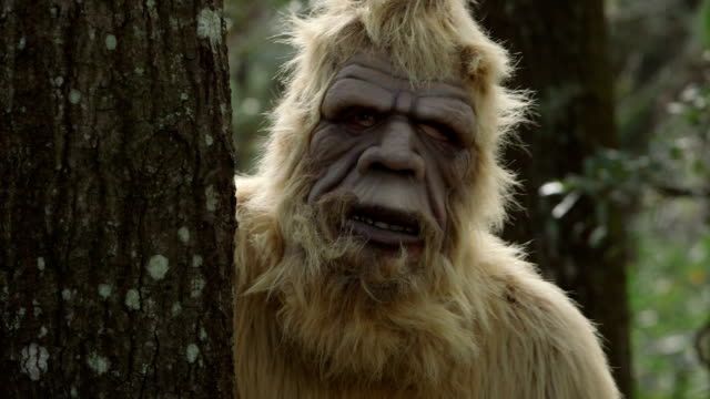 Sasquatch im Wald – Video
