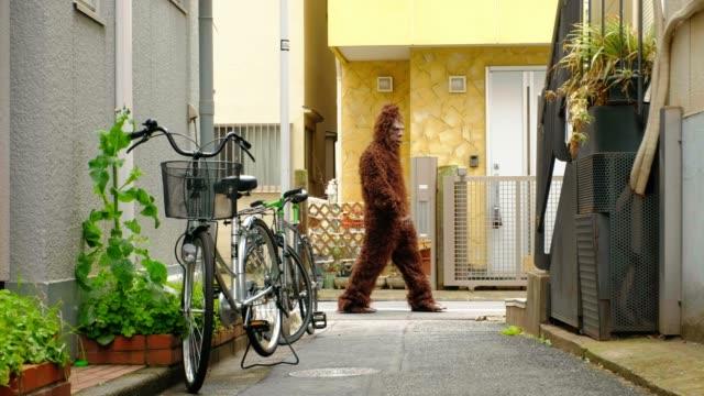sasquatch in tokyo japan - yeti video stock e b–roll