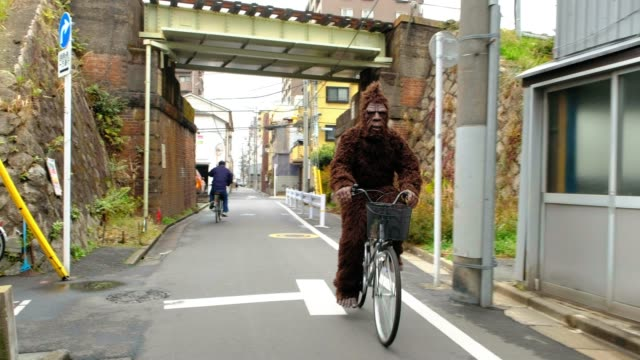 sasquatch in tokyo japan - primate video stock e b–roll
