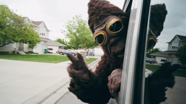 sasquatch riding in a car - yeti video stock e b–roll