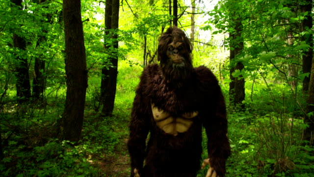 Sasquatch (Big Fuß) zu Fuß durch den Wald – Video