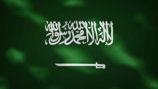 사우디 아라비아 조밀 한 플래그 패브릭 웨이버, 배경 루프 - saudi national day 스톡 비디오 및 b-롤 화면