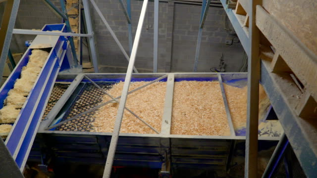 sawdust from the milling processed on a machine - segatura video stock e b–roll