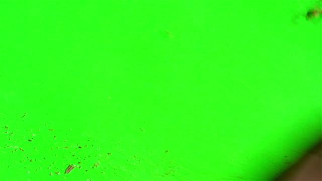 sawdust su uno schermo verde - segatura video stock e b–roll