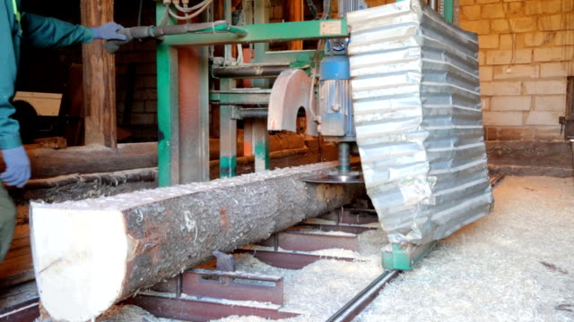 sawing the stem of the tree in saw-mill - truciolo video stock e b–roll