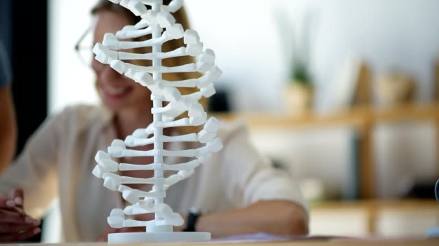 Scaled up look on DNA model studied by scientists Scientific study. Selective focus on a monochrome 3D DNA model standing on a table while a team of two scientists examining it and having a conversation in the background. biosensor stock videos & royalty-free footage