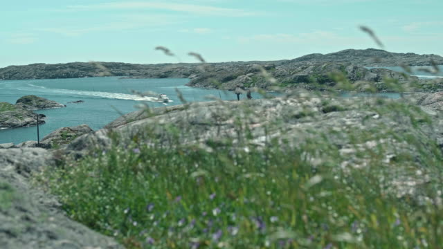den skandinaviska skärgården sommar tid - summer sweden bildbanksvideor och videomaterial från bakom kulisserna