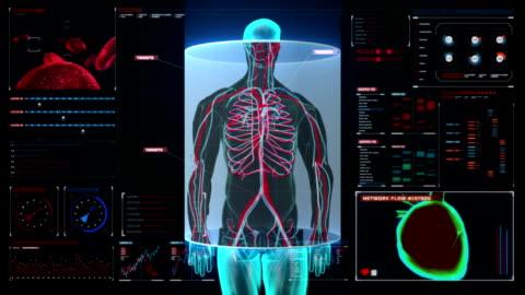 vídeos de stock e filmes b-roll de scanning blood vessle in male body digital display dashboard. - corpo humano