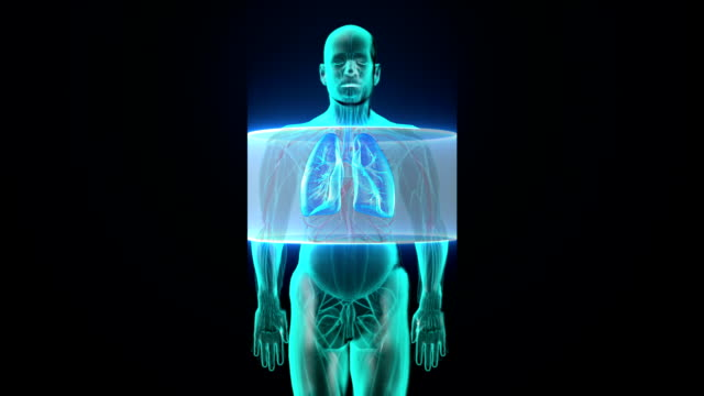 Scanning body. Rotating Human lungs, Pulmonary Diagnostics, Blue X-ray light. video