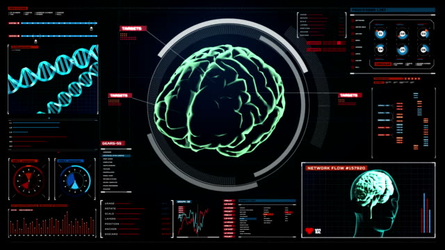 Scanning Brain in digital display dashboard. X-ray view Scanning Brain in digital display dashboard. X-ray view blood flow stock videos & royalty-free footage