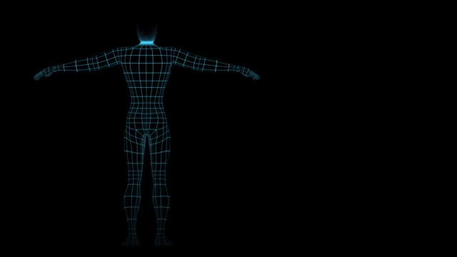 scanning wireframe human figure rotation left - modalità wire frame video stock e b–roll