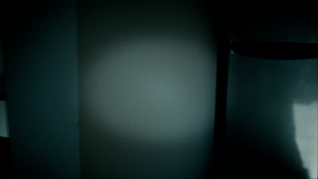 Scary house hallway high definition video