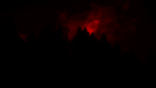 Scary Red Moon Above The Trees Big blood red moon above the trees at night count dracula stock videos & royalty-free footage