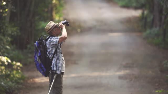 自然を楽しみながら歩くカネと歩くアジアのシニア男性のシーン、彼は幸せで休日、リラクゼーションの瞬間を楽しんでいます。高齢者自然日常生活のコンセプト - バードウォッチング点の映像素材/bロール