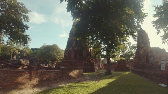 Scene of temple in Ayutthaya Historical Park In the midst of nature, Tree. Wat phra mahathat, Ayutthaya province, Thailand