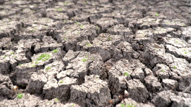 scene slow motion of dry cracked earth during climate change drought disaster, global warming - climate change video stock e b–roll