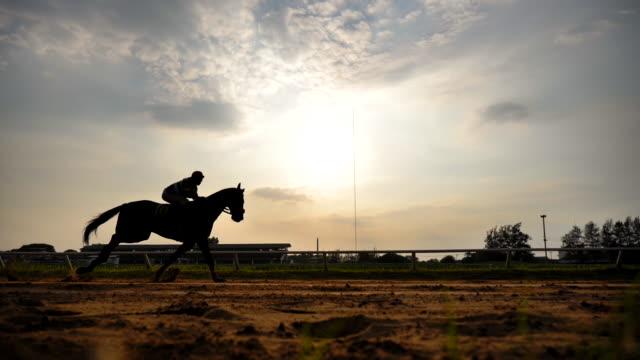 scen slow motion silhuett av hästkapplöpning - racehorse track bildbanksvideor och videomaterial från bakom kulisserna
