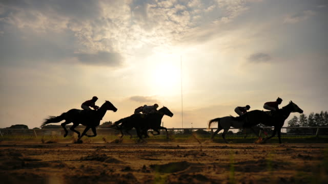 Scene slow motion silhouette of horse racing
