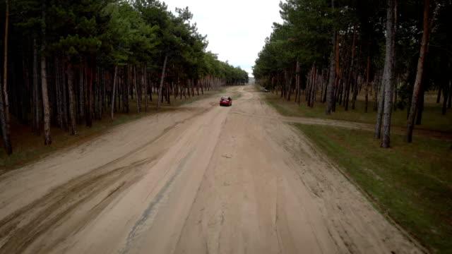 Scen med flygtoppsutsikt spåra röd bilrutt mellan trädskog bredvid grå auto under vila och picknick video