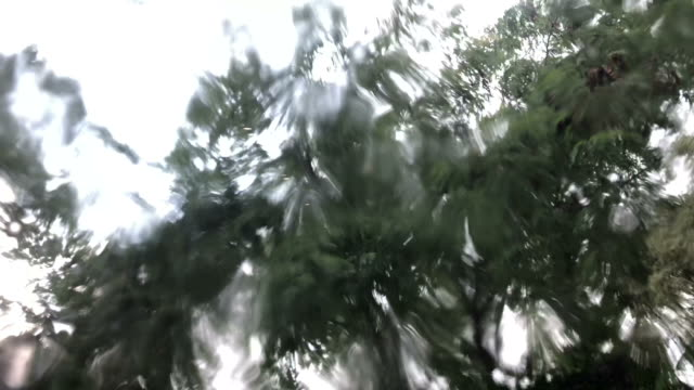 Scenery view in rainy day , scene throwing out window video
