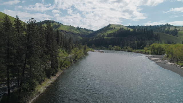 Scenic aerial view of Clearwater River between mountains in the Rattlesnake Wilderness Area, Missoula County, Montana, in the sunny spring day. Drone video with the panoramic cinematic camera motion. Scenic aerial view of the mountains Montana, USA. 4K UHD aerial drone video footage. national landmark stock videos & royalty-free footage