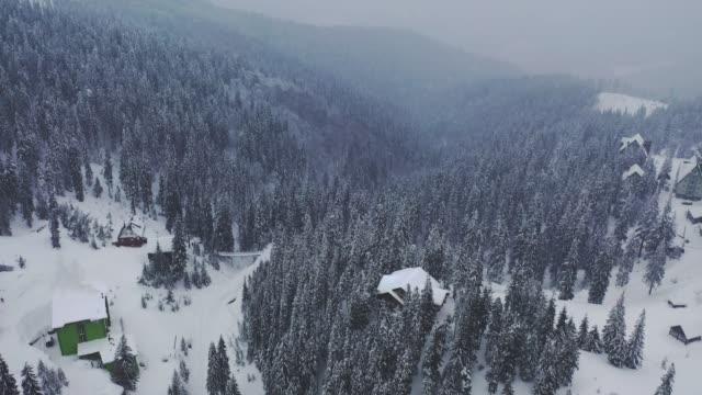 scenic aerial view of village in carpathian mountains in winter - polska filmów i materiałów b-roll