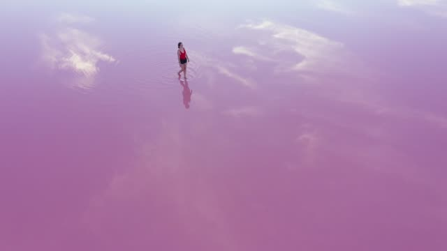 Scenic aerial view of woman walking  on pink salt lake in Ukraine