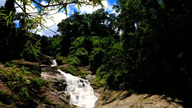 Scenic nature of beautiful waterfall in wild jungle forest environment at Thailand, 4K. Shot of The stream flows from the waterfall. nakhon si thammarat stock videos & royalty-free footage