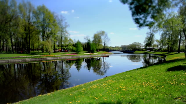 Scenic spring landscape Tilt video