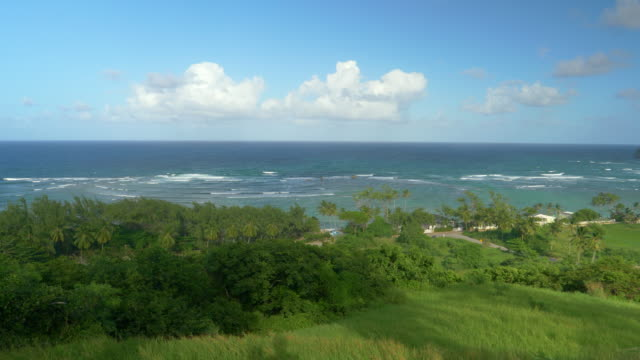 Scenic view from a hill overlooking the idyllic tropical coastline of Barbados.