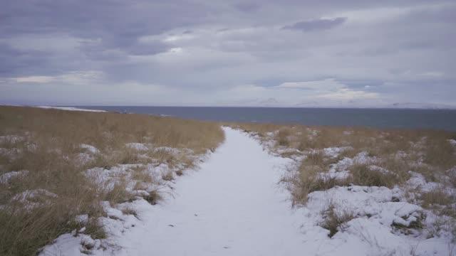 vidéos et rushes de vue panoramique sur la plage de sable noir près des montagnes aux sommets enneigés en islande - paysage extrême