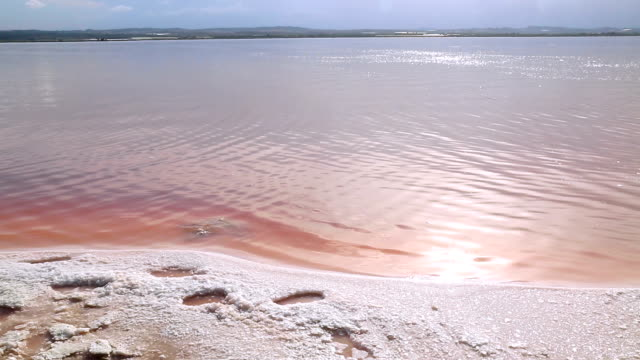 Scenic view of colorful Pink Salt Lake video