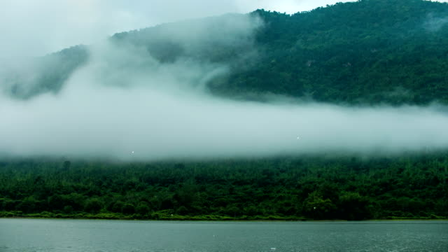 Scenic View of Fog Flowing on Tropical Trees on Mountains, Time-lapse video video