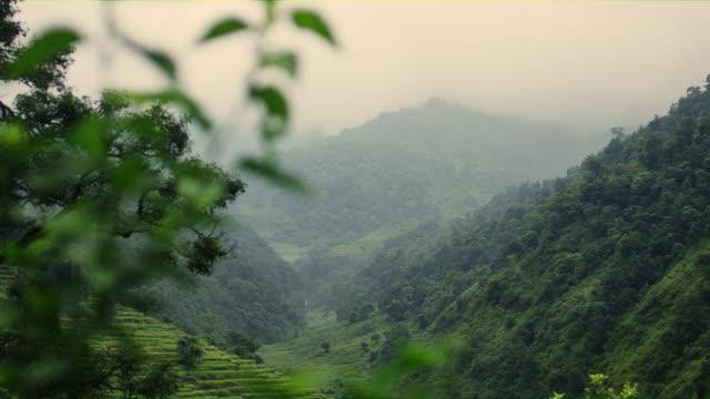 ライス テラス ネパールの美しい景色。 - ネパール点の映像素材/bロール