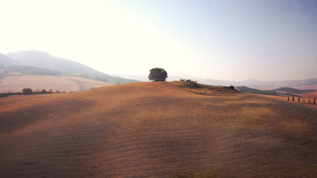 Scenic view of Val d'Orcia video