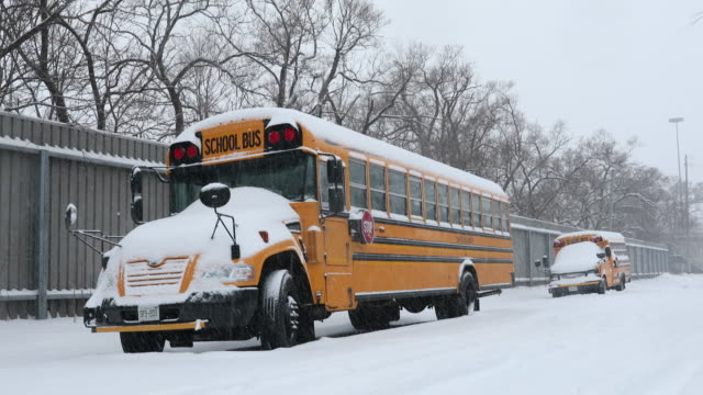 school bus on a snowy road snow - school buses stock videos and b-roll footage